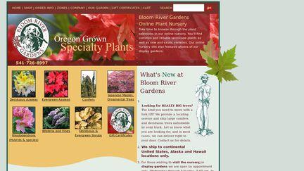 BloomRiver