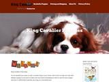 KingCavalierPuppies