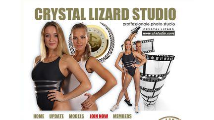 Crystal Lizard Studio