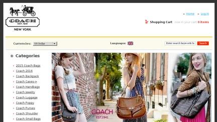 Coach.ergowb.com