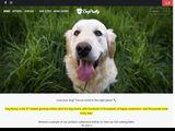 Dog Pawty