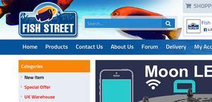 Fish-Street
