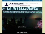 LAIntelligence