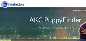Marketplace.akc.org