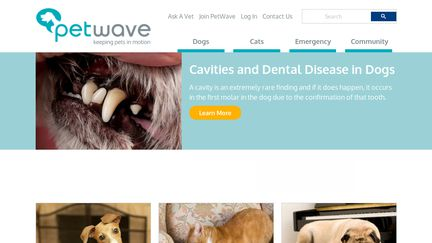PetWave Corporation