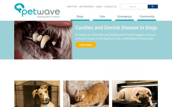 PetWave Corporation