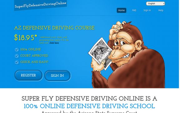 Super Fly Defensive Driving Online