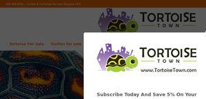 Tortoisetown.com
